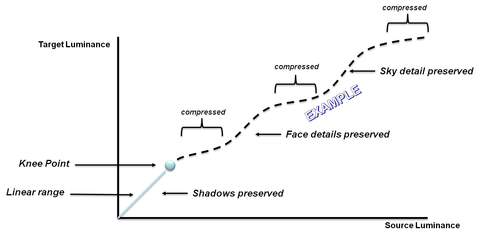 custom tone map curve